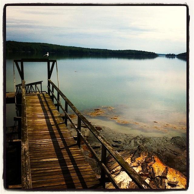 Maine Ocean view