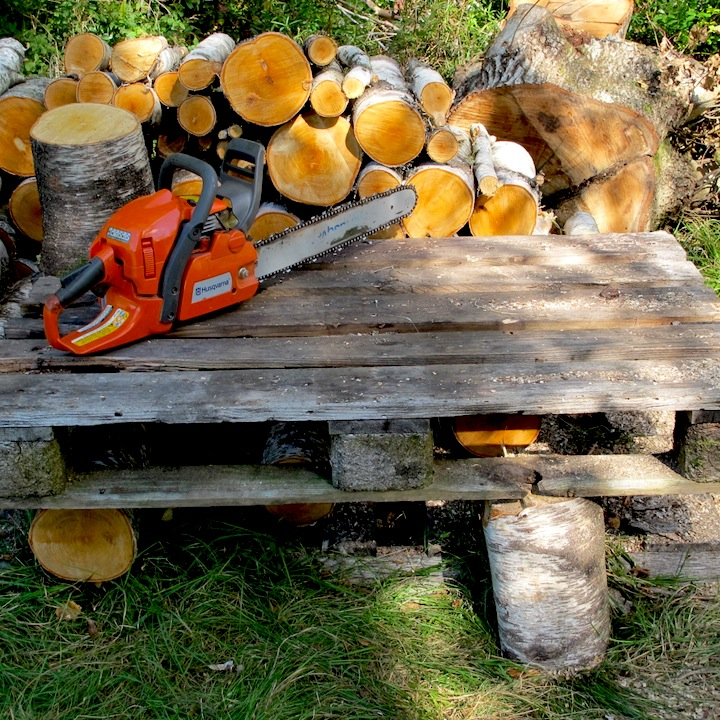 Wood and chainsaw