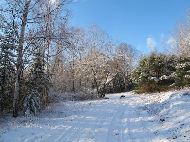 Maine Dec 11, 2013