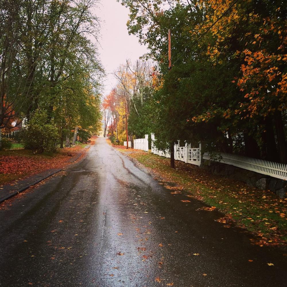 Rain Maine