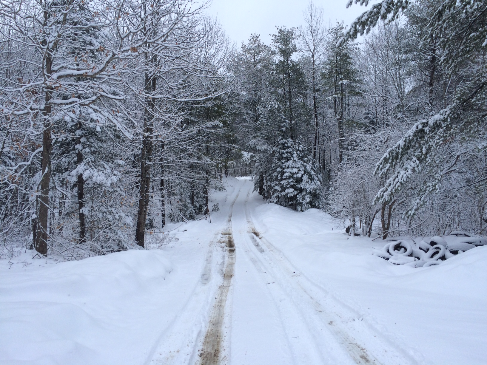 Maine snow April