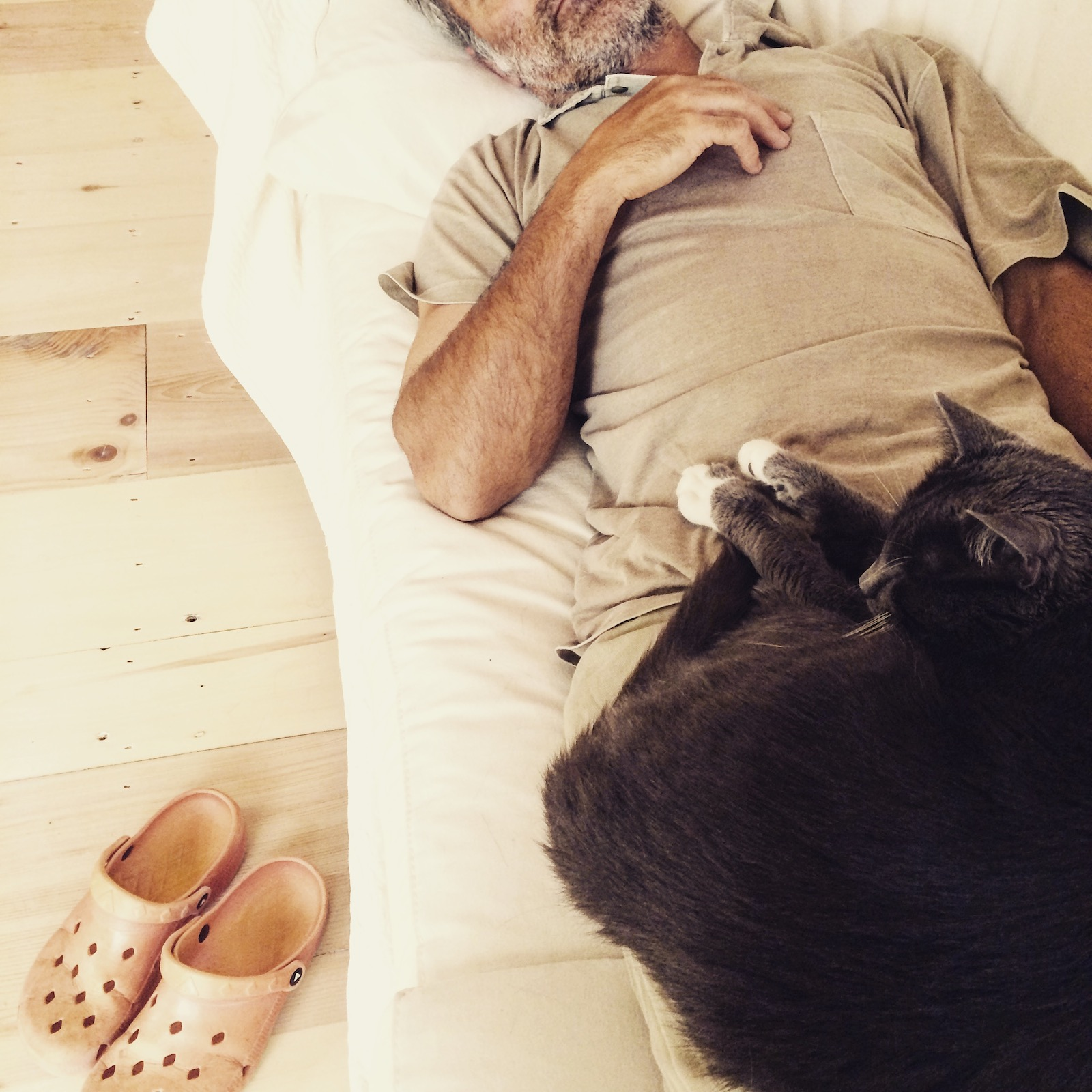 Sleepy Sunday in Maine with Kitties and crocs