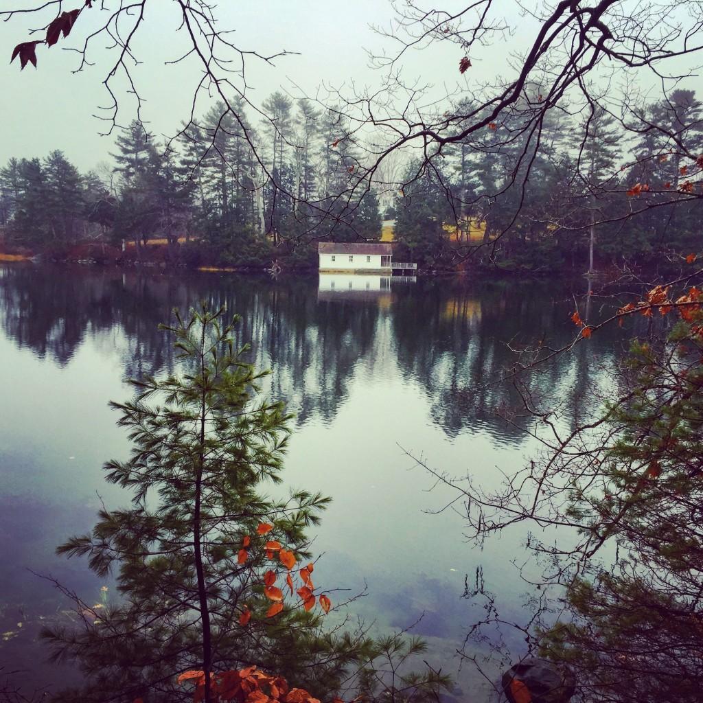 On the water. Maine. Views. Winter walks,