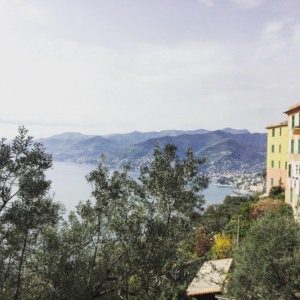 Camogli views