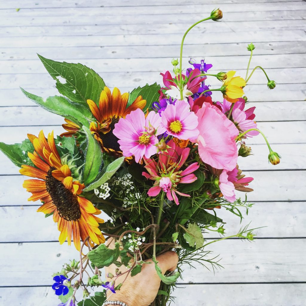 organic bouquet Maine