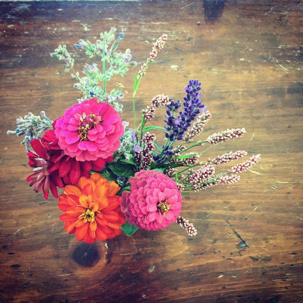 Garden Flowers July 2017
