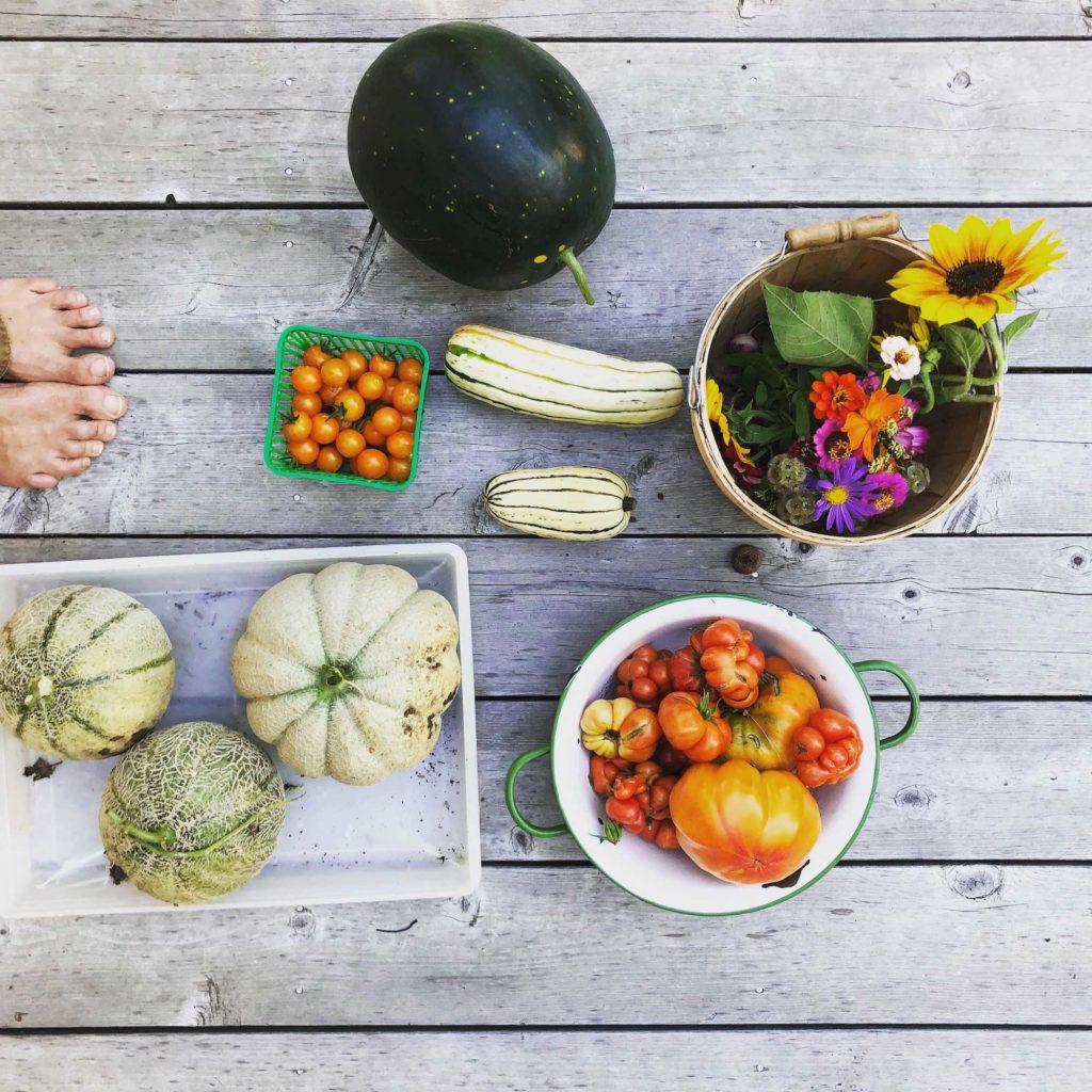 Organic Produce Maine